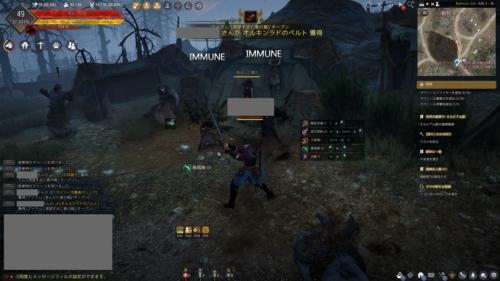 黒い砂漠 戦闘イメージ